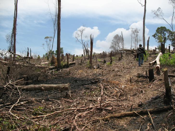 Cara Mengatasi Pencemaran Tanah