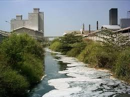 Sungai tercemar limbah pabrik