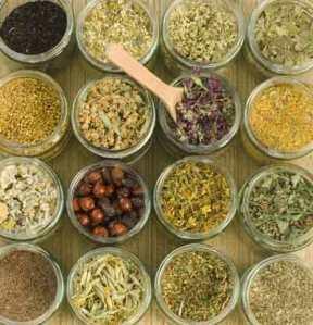 herbal, pengobatan alternatif, ARV, HIV, AIDS